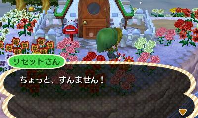 とびだせどうぶつの森 Animal Crossing New Leaf
