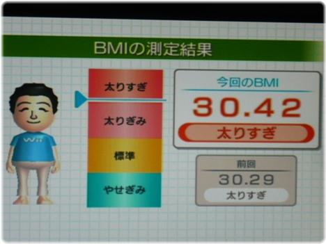 Wii Fit Plus P1120783.JPG