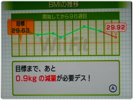 WiiFitPlus P1120895.JPG