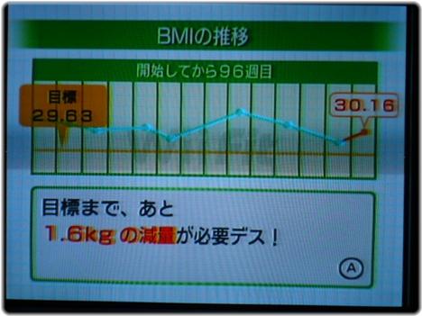 WiiFitPlus P1120907.JPG