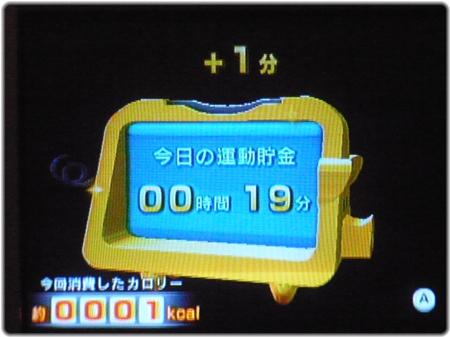 WiiFitPlus P1130001.JPG
