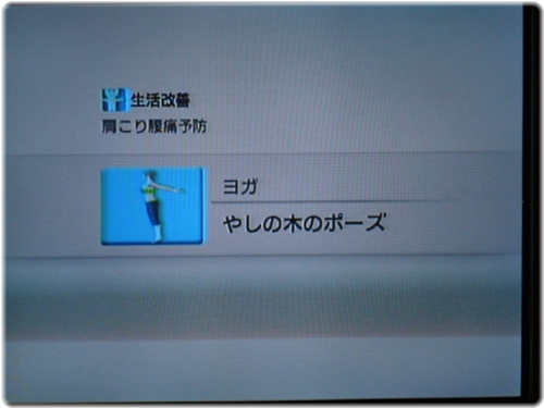 WiiFitPlus P1130009.JPG