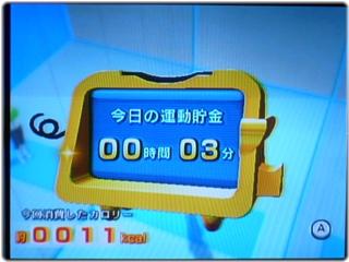 WiiFitPlus_P1120987.JPG